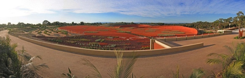 Red Sand Garden Cranbourne, VIC, 3977