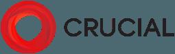 Crucial Hosting Logo
